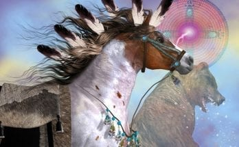 Native American Animal Symbols