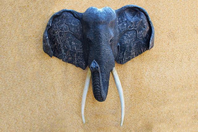 Animal Likeness and Animal Symbolism