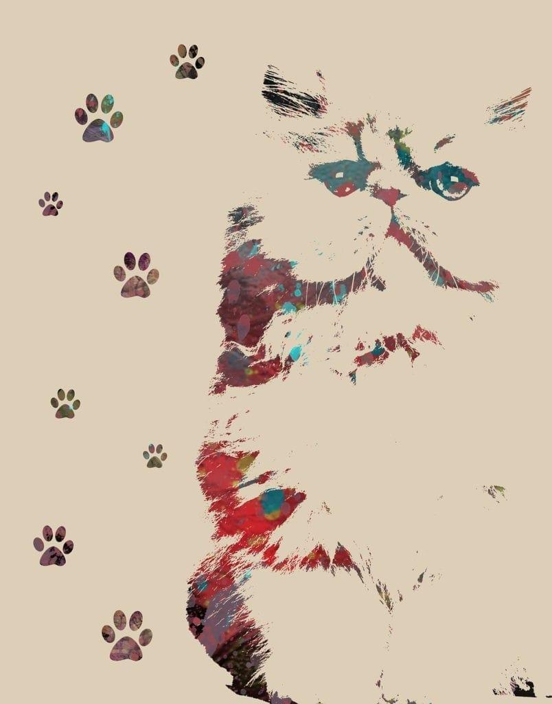 animal symbolism cat prints