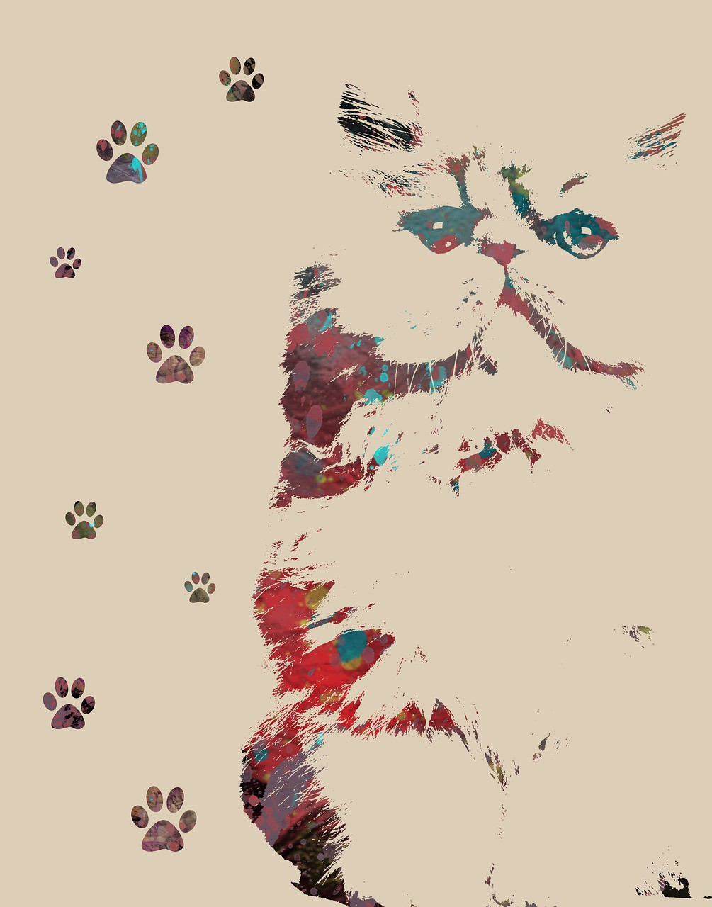 Animal Symbolism Cat Prints And Meanings On Whats Your Sign