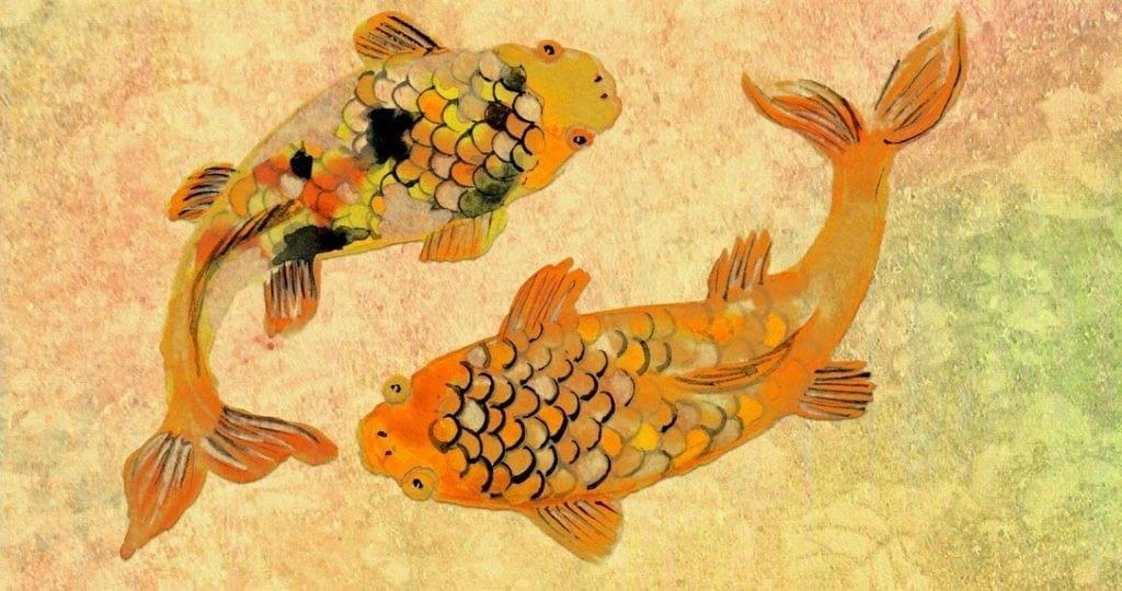 animal symbolism koi fish tattoo meanings