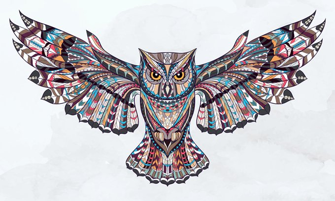Animal Symbolism Owl Whats Your Sign