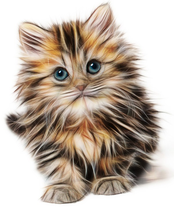 cat tattoo ideas and cat meanings