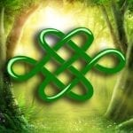Celtic Dara Knot Meaning