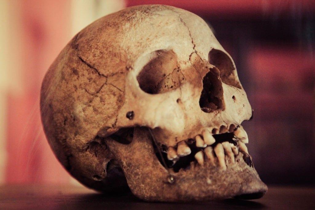 celtic skull symbol meaning