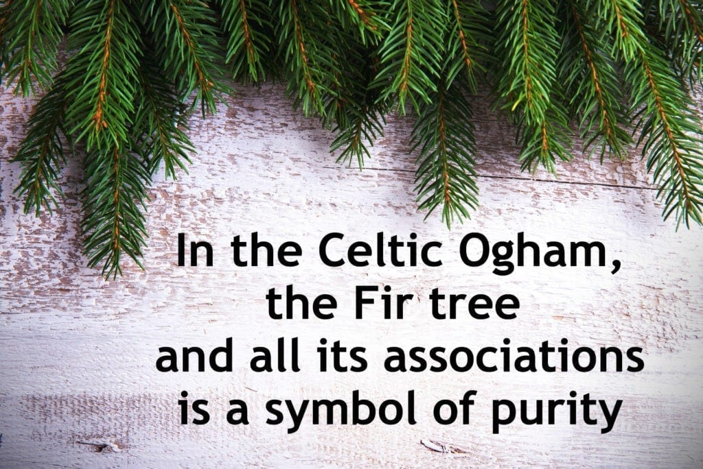 Celtic Symbol for purity in the Celtic Ogham