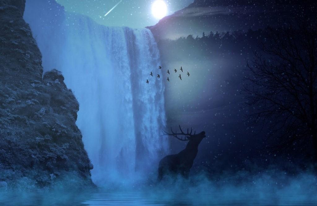 interpreting animals in dreams