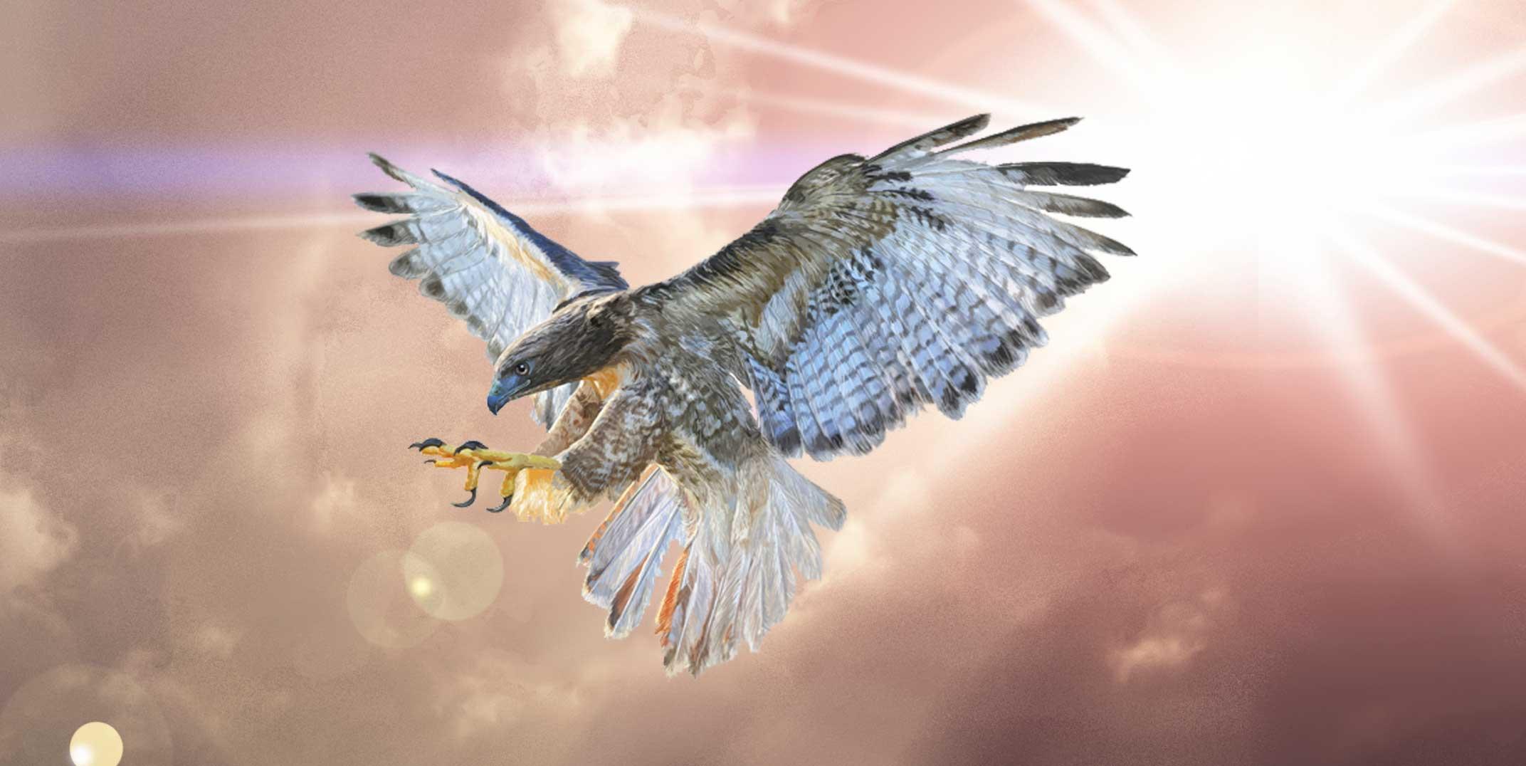 falcon tattoo ideas and falcon meaning