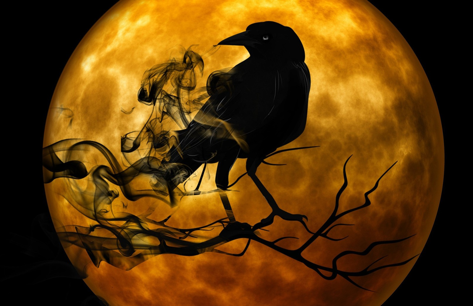 Symbolic Meaning Of Black Birds On Whats Your Sign