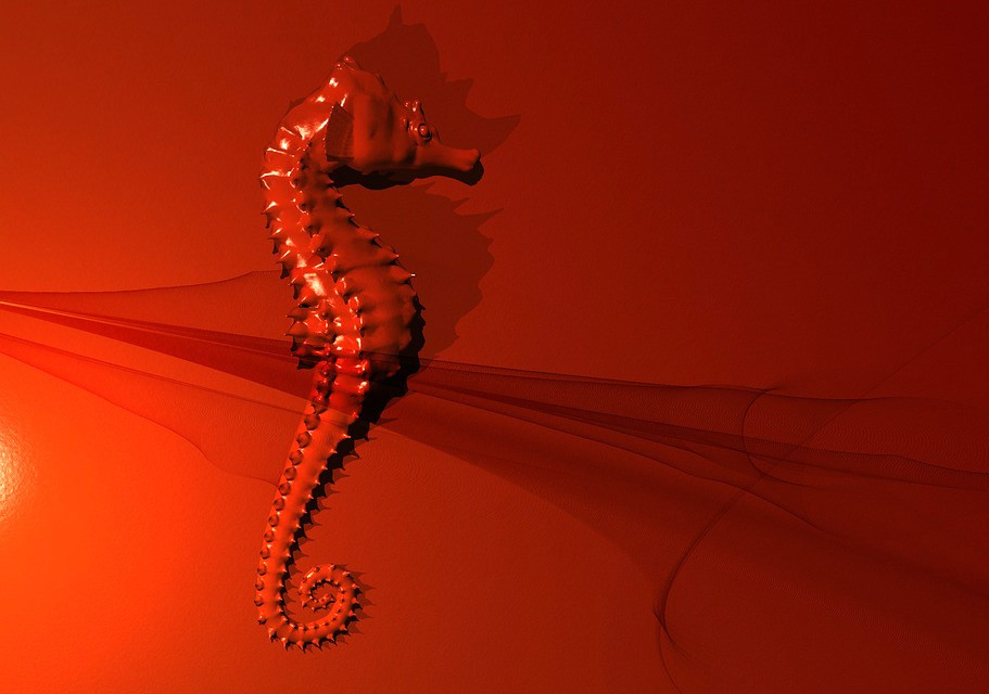 symbolic meaning of seahorse