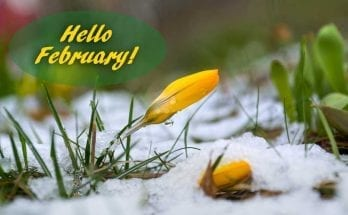 February meaning and symbolism