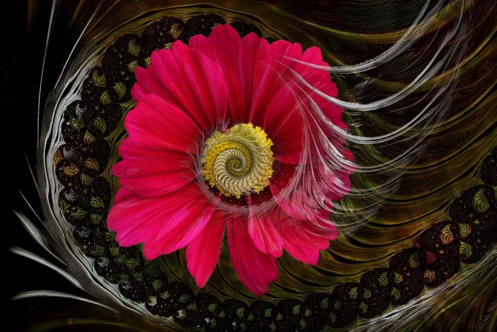 flower meanings in dreams and dream interpretation