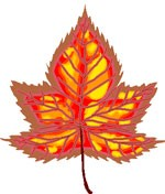 maple leaf love symbol meaning