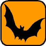 bat meaning and halloween symbols