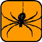 spider meaning as a Halloween symbol