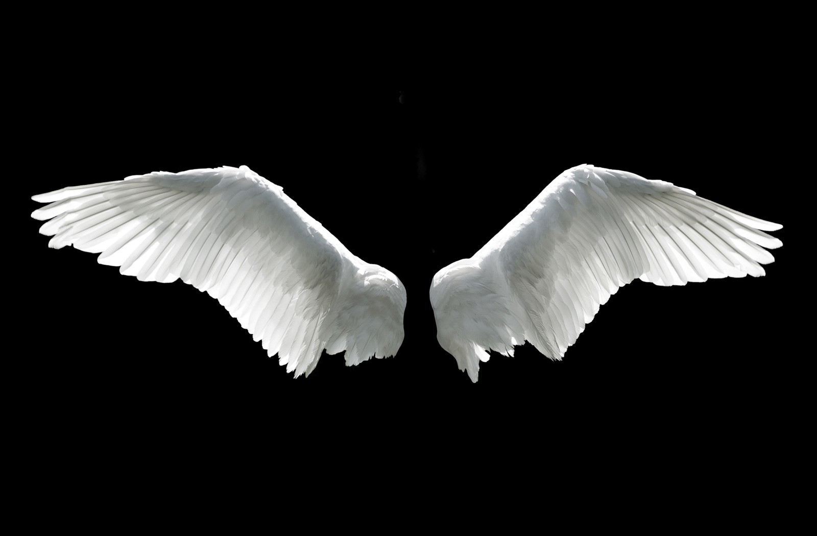 Meaning of Wings