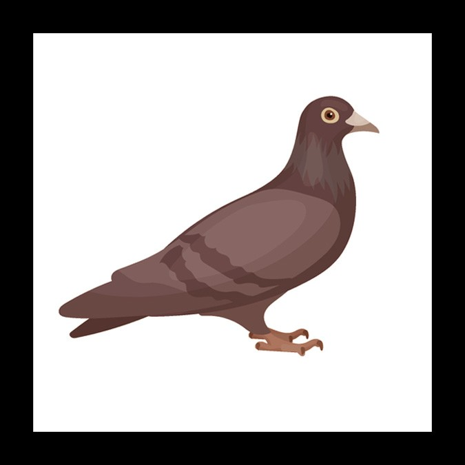 dove meaning mother symbol