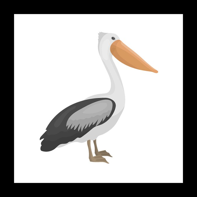pelican meaning and mother symbol