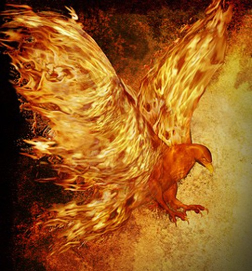 phoenix meaning for tattoo ideas