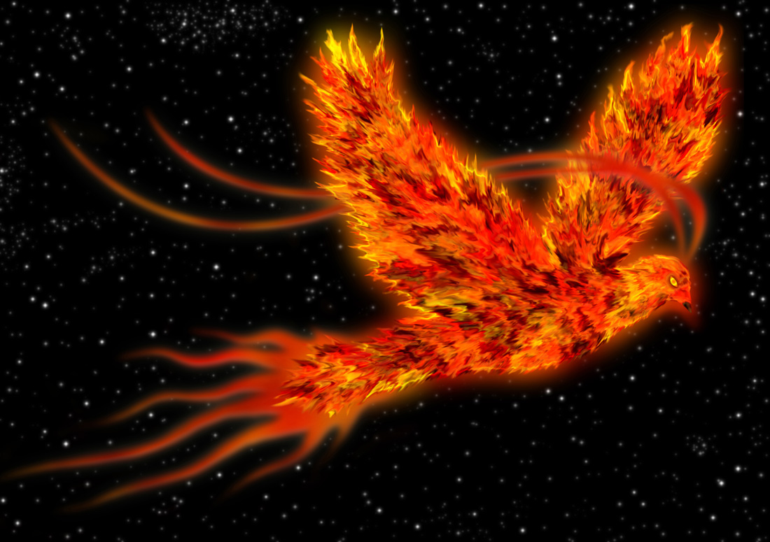 Phoenix Meaning For Tattoo Ideas On Whats Your Sign