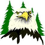 eagle solstice symbols