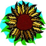 sunflower meaning solstice symbol