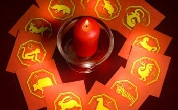 Chinese Zodiac Signs