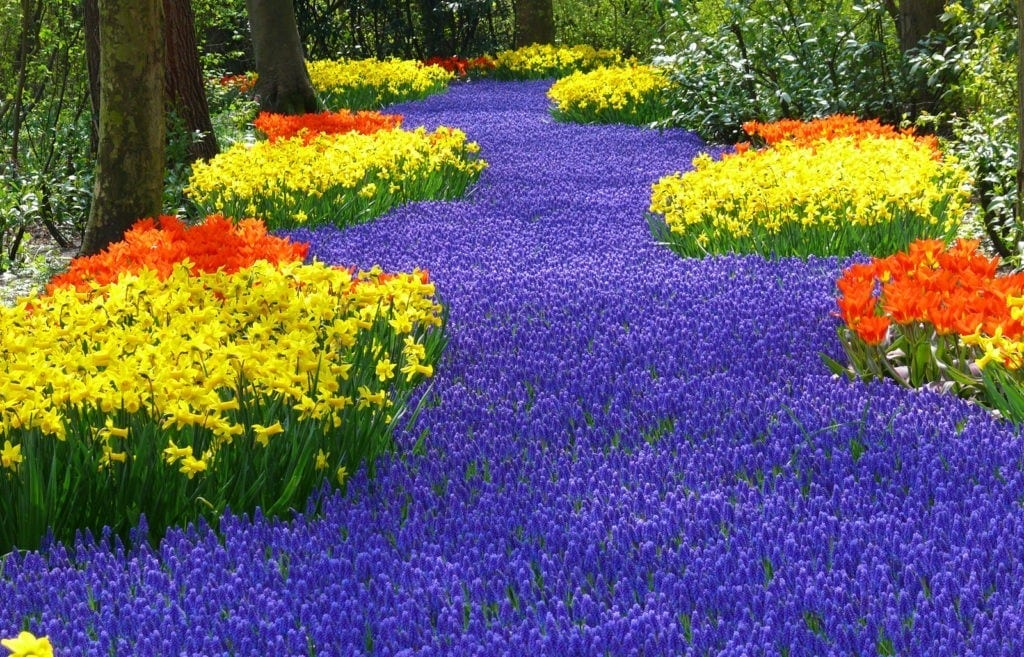 flower garden meaning