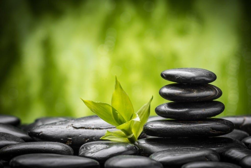 Rock garden meaning