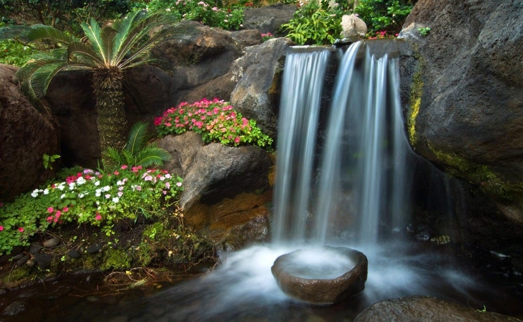 Water garden meaning