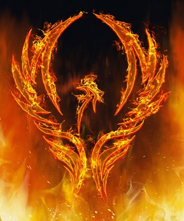 meaning of the phoenix