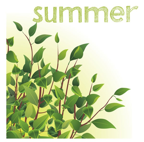 meaning of seasons meaning of summer