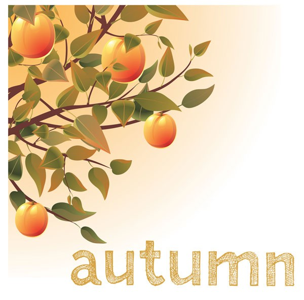 meaning of seasons autumn