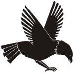 symbols for saints eagle meaning