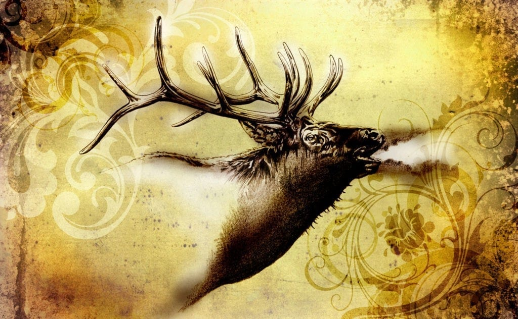symbolic stag meaning and stag tattoo ideas