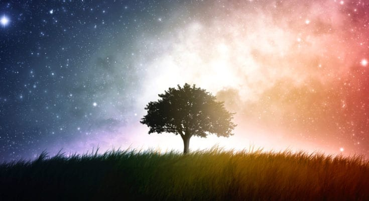 tree symbolism and tree meaning