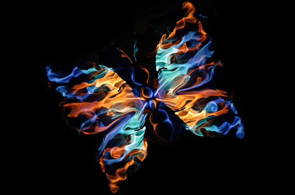 butterfly meaning and law of attraction