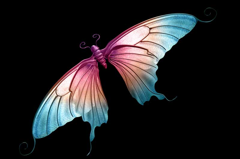 symbolic butterfly meaning