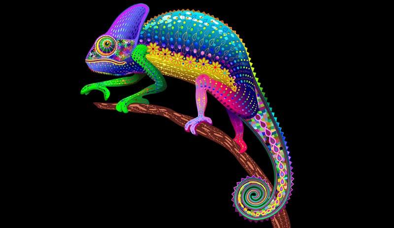 lizard dream meanings