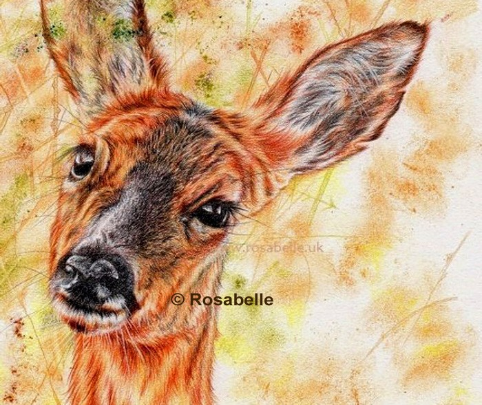 Deer artwork by Rosabelle Art