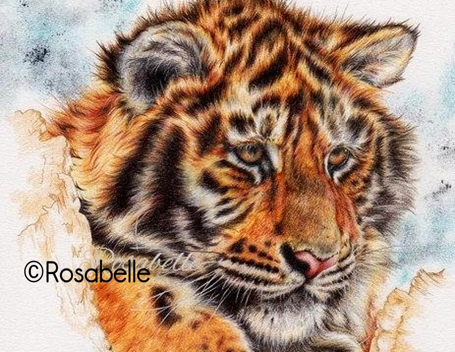 Stunning Tiger Artwork by Rosabelle and Symbolic Tiger Meanings