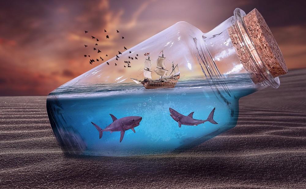 Dream shark meaning, dreaming of sharks