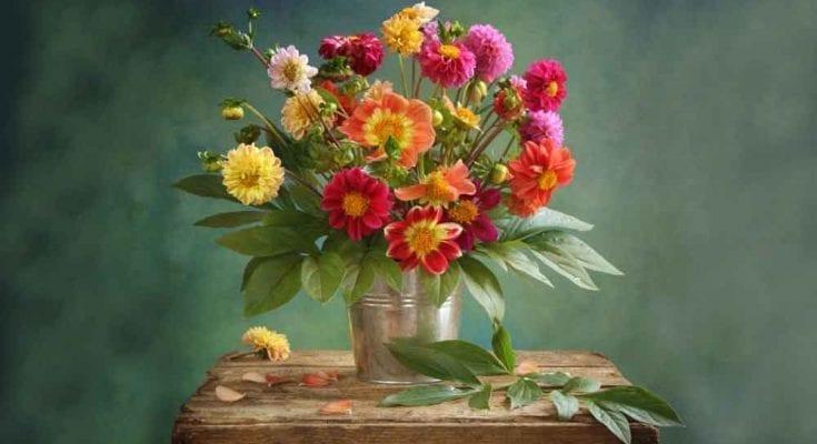 Interpreting Flower Meanings