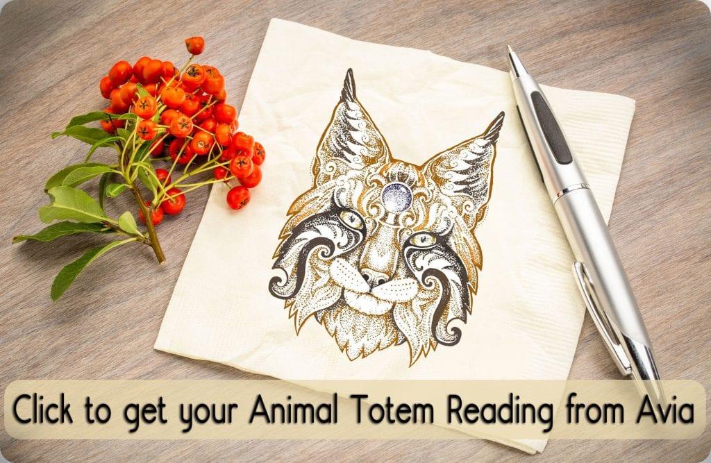 Animal Totem Reading from Avia