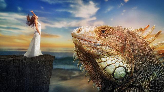 dream lizard meanings