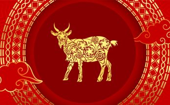 Goat Chinese Zodiac Sign Meaning and the Chinese New Year