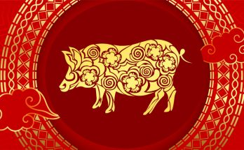 Pig Chinese Zodiac Sign Meaning and Chinese New Year