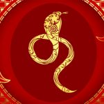 Snake Chinese Zodiac Sign Meaning and Chinese New Year