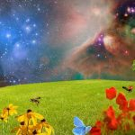 Spring Zodiac Signs, Astrology and the Seasons