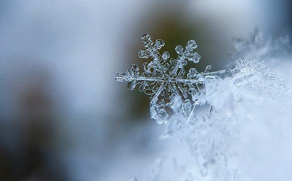 Winter Zodiac Signs, Astrology and the Seasons